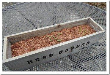 allinsons-herb-garden
