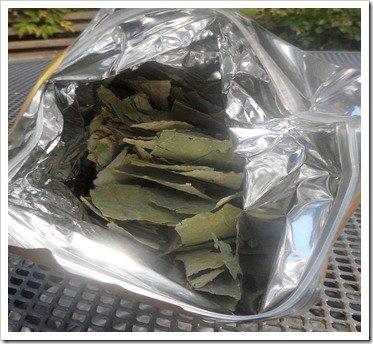 slim-lotus-tea-leaves