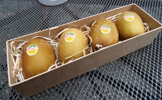 Gold Kiwi Fruit from Chingford Fruit