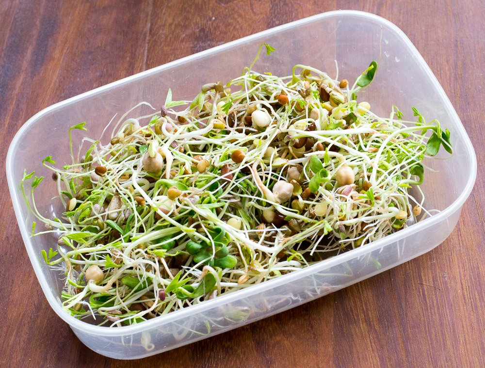 Storing sprouted seeds